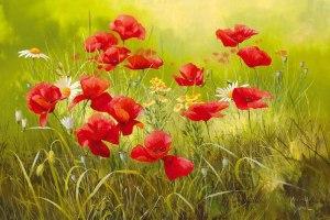 Прекрасные полевые цветы в работах художницы Mary Dipnall.